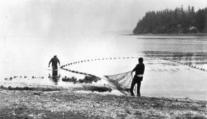 beach seiners suquamish tribe