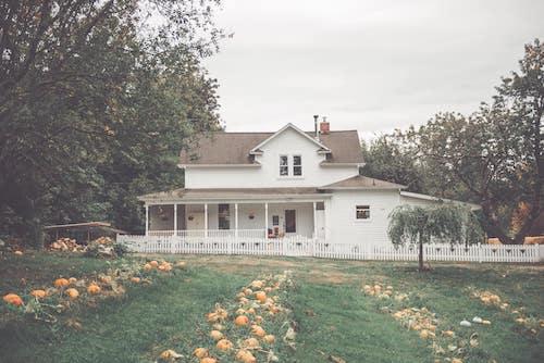 creek-house-farm-port-orchard